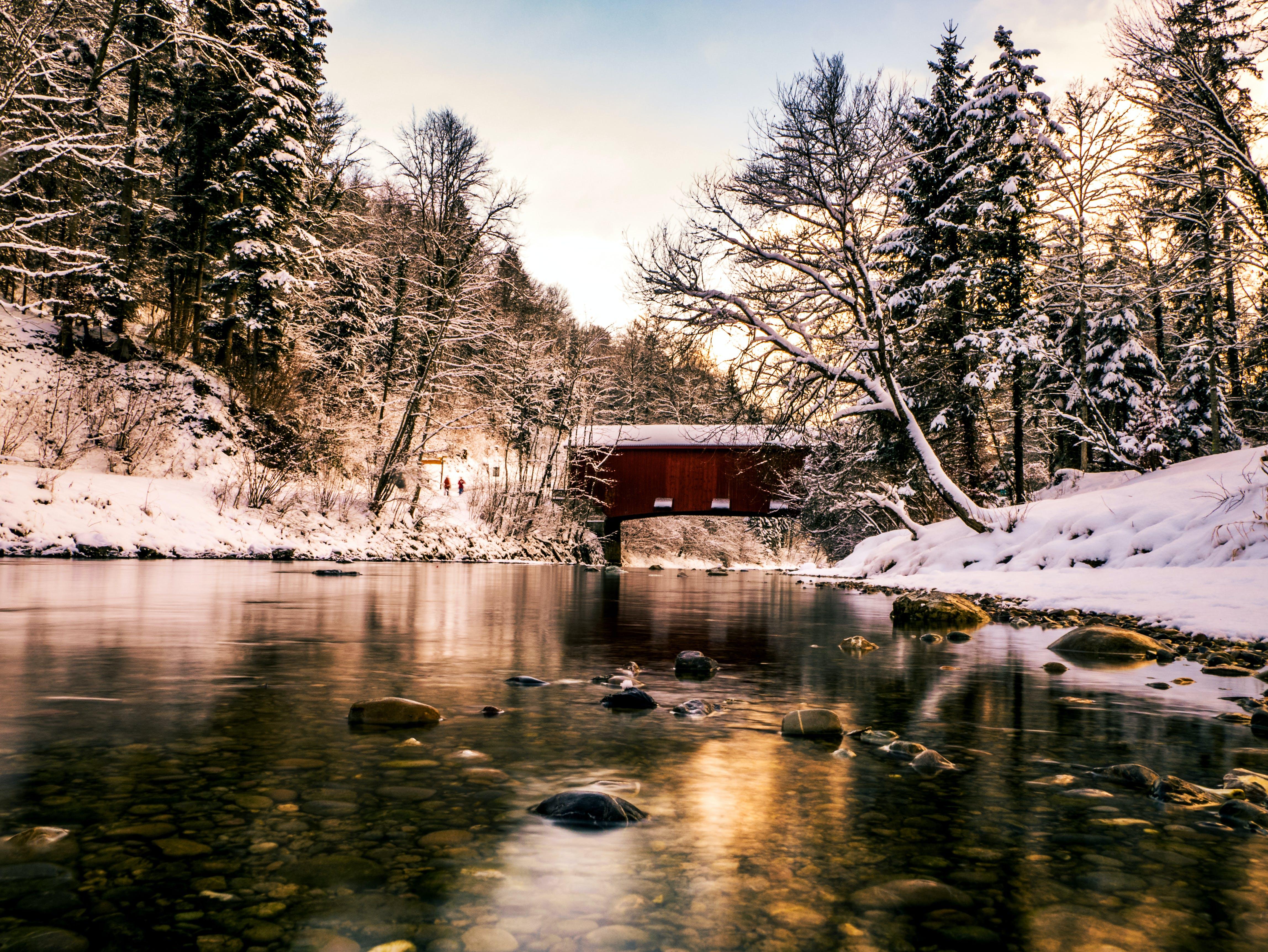 Foto stok gratis bayangan, paparan panjang, refleksi cahaya, salju