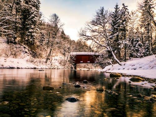 Kostnadsfri bild av lång exponering, ljusreflektioner, reflektioner, snö