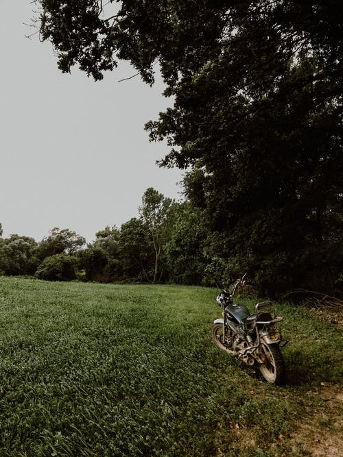 Black Motorcycle Parked on Green Grass Field Near Green Trees
