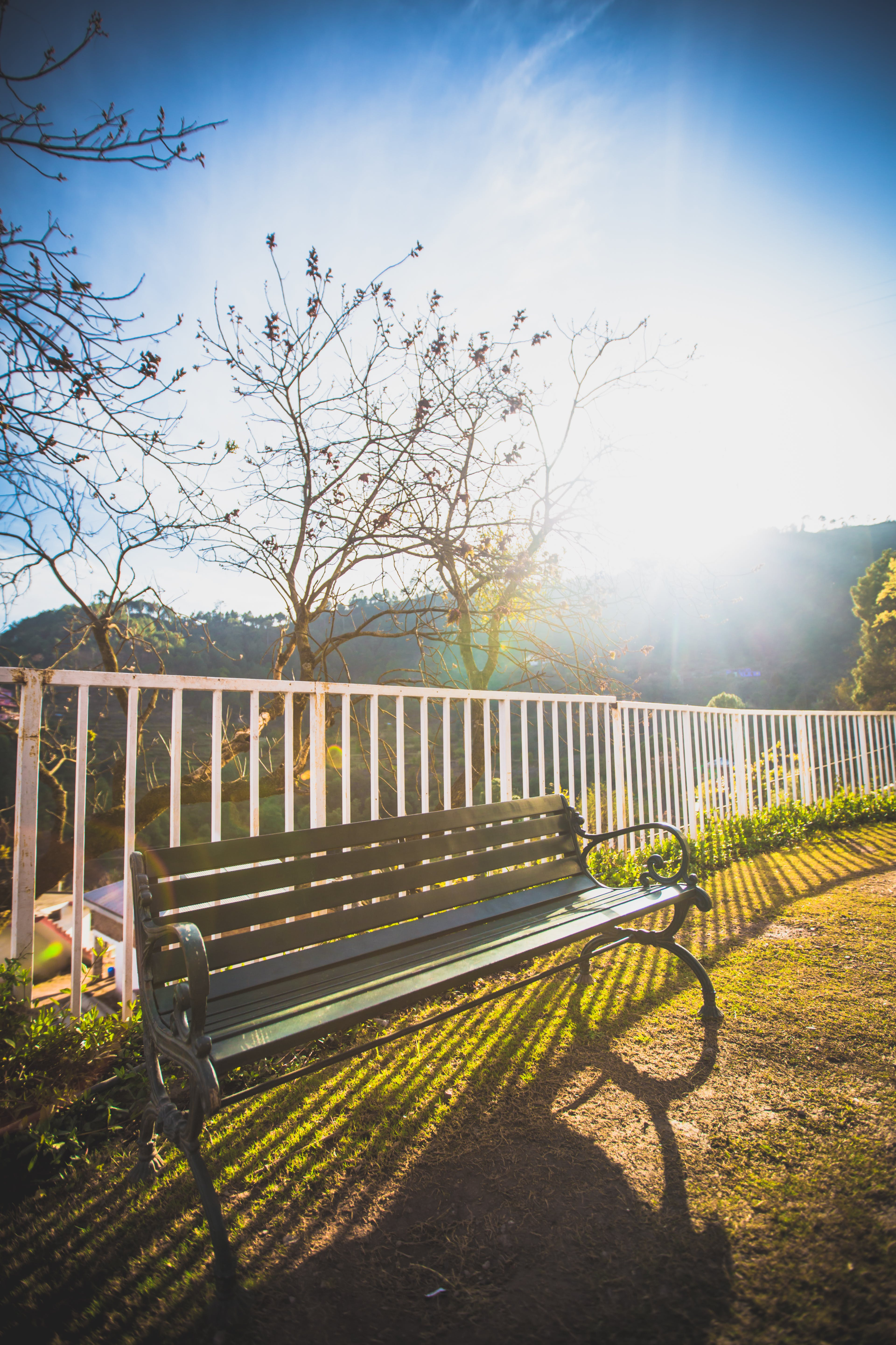 Free stock photo of bench, blue sky, early morning, fence