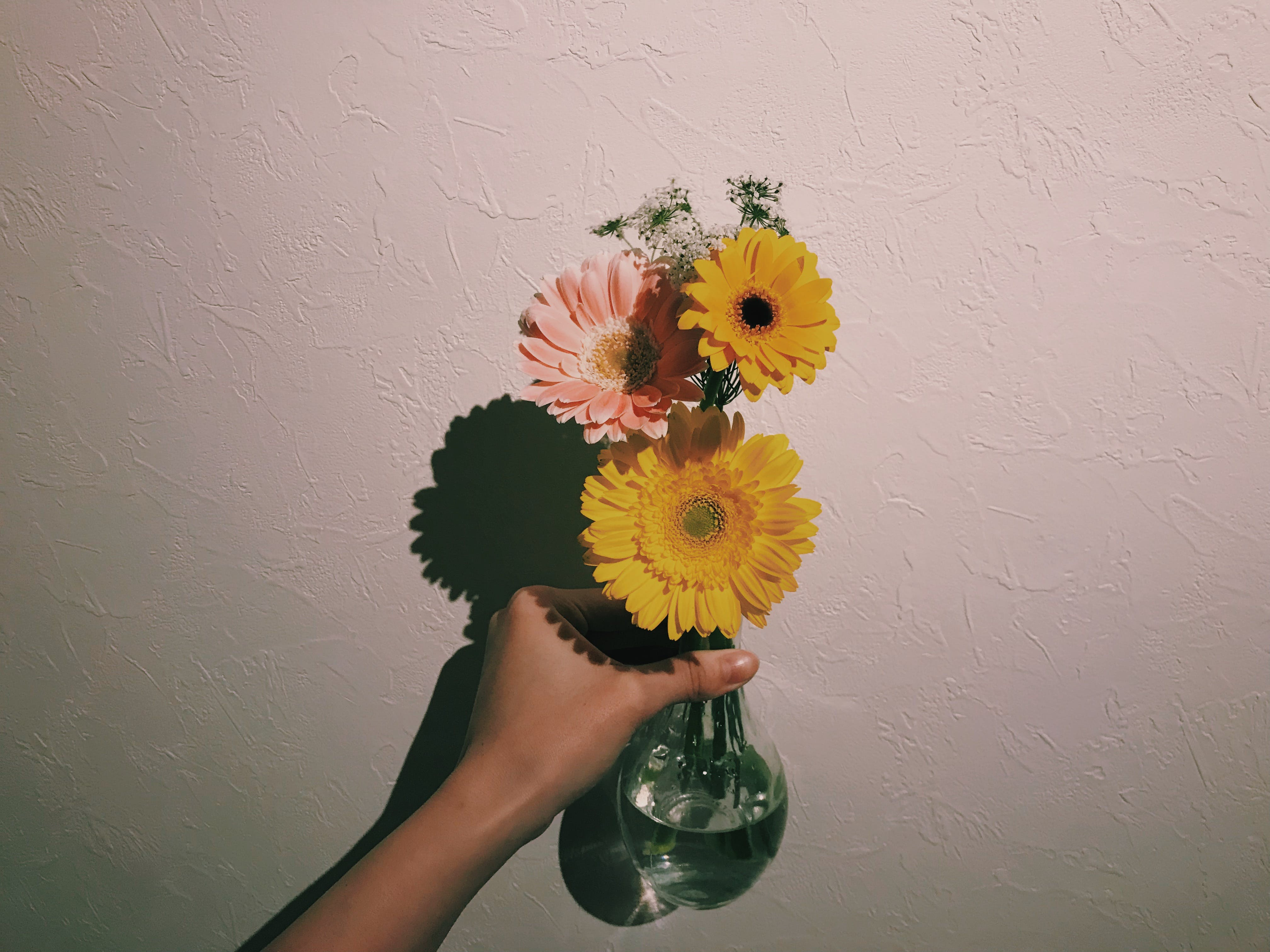 Person Holding Clear Glass Vase With Flowers