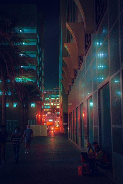 Free stock photo of buildings, city lights, night light