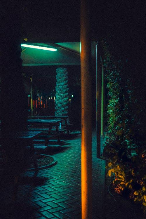 Free stock photo of night light, night scene, park
