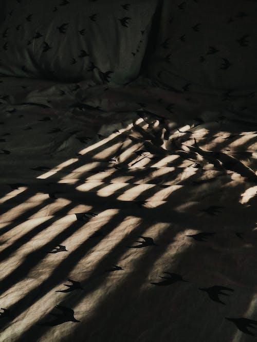 Kostenloses Stock Foto zu abstrakt, dunkel, landschaft