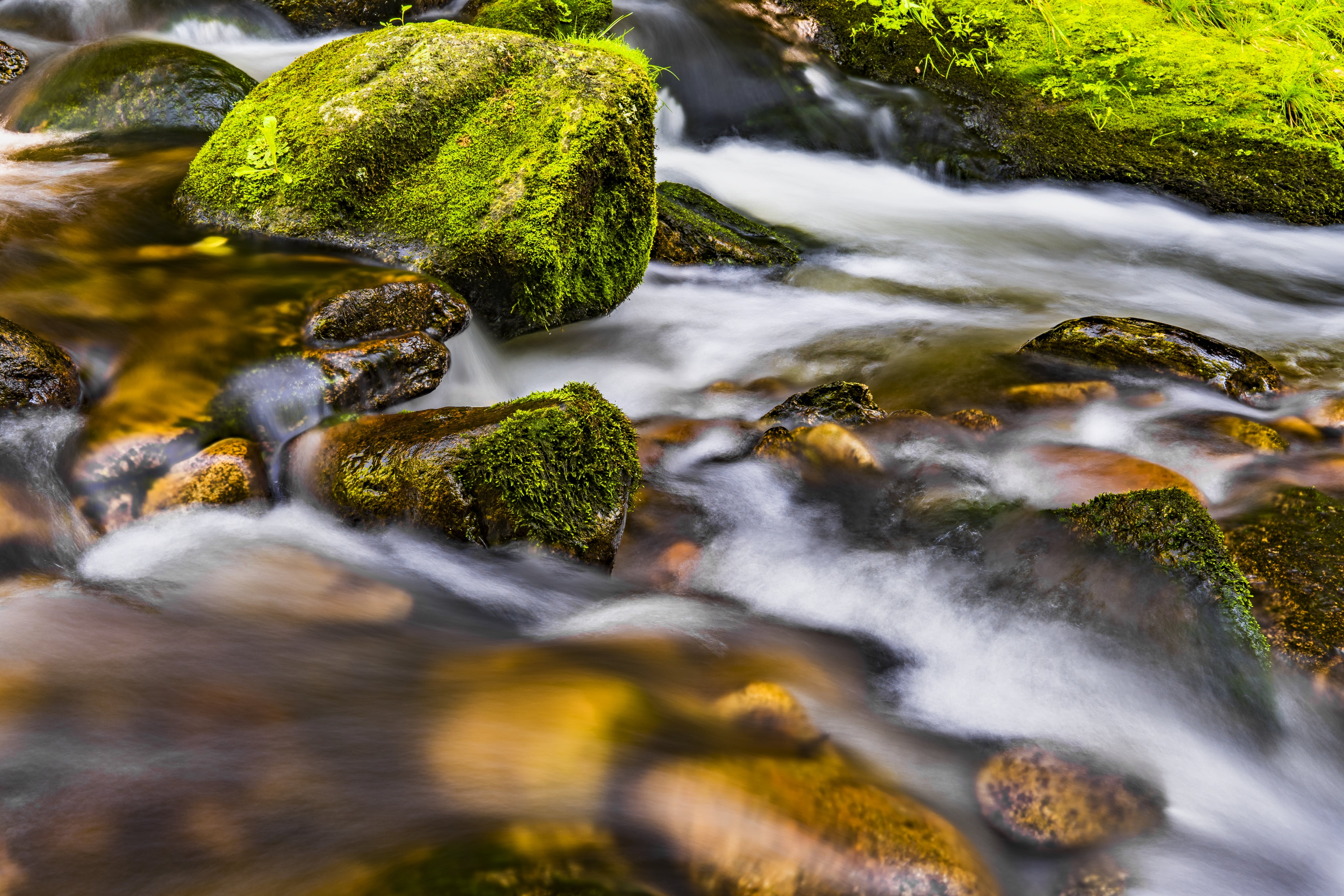 Closeup Photo Body of Water and Green Stone