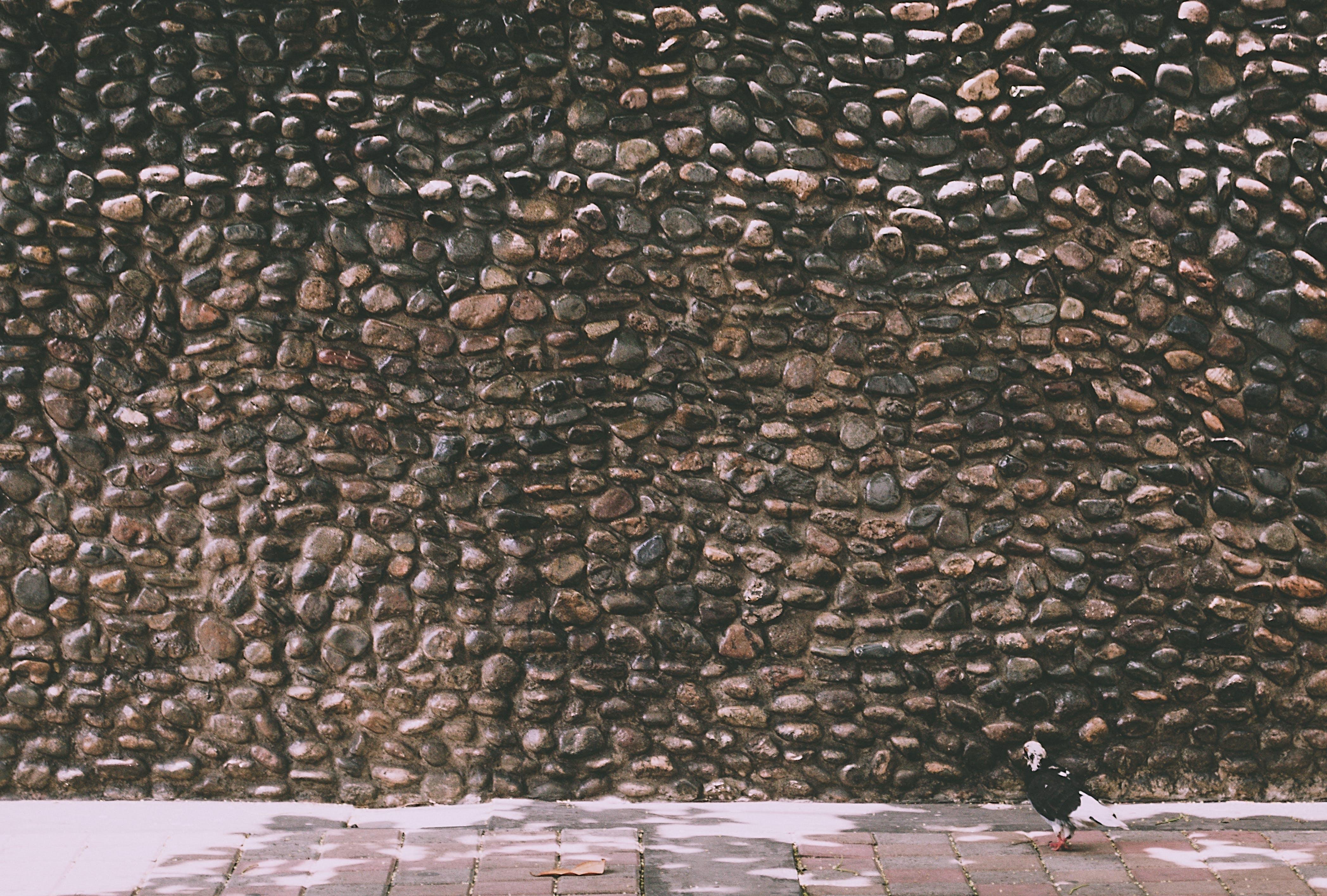 Free stock photo of stone, stone wall, stone walls, texture