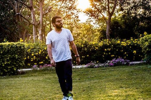 걷고 있는, 골든 아워, 꽃밭, 남자의 무료 스톡 사진