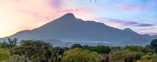 Free stock photo of arusha, kilimanjaro, ms tcdc