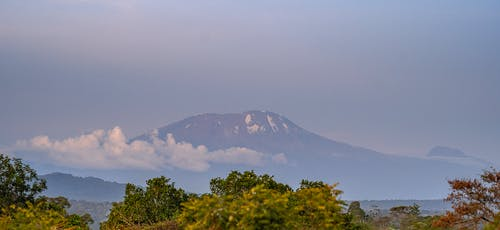 kilimanjaro, ms tcdc içeren Ücretsiz stok fotoğraf