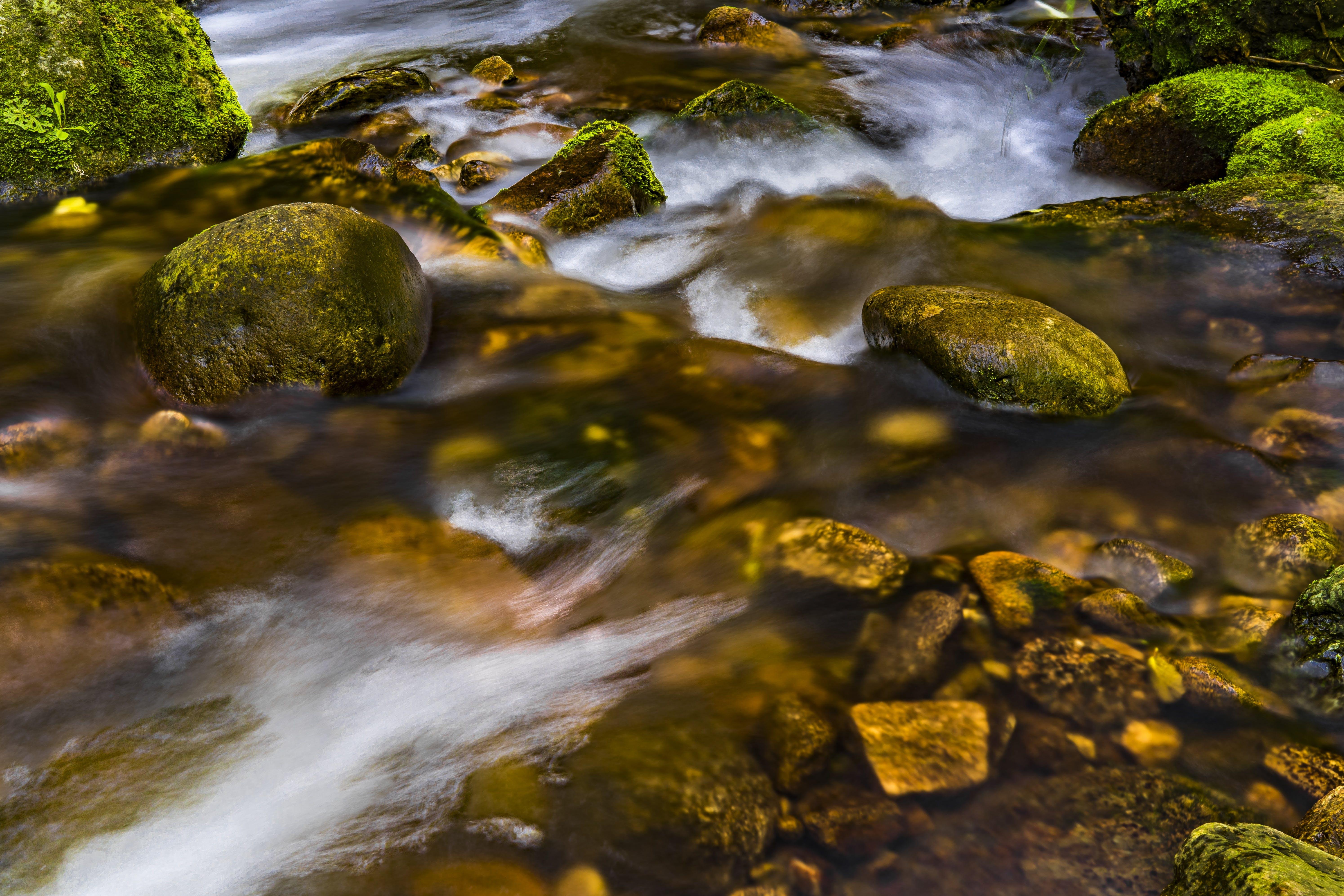 Photo of Streams