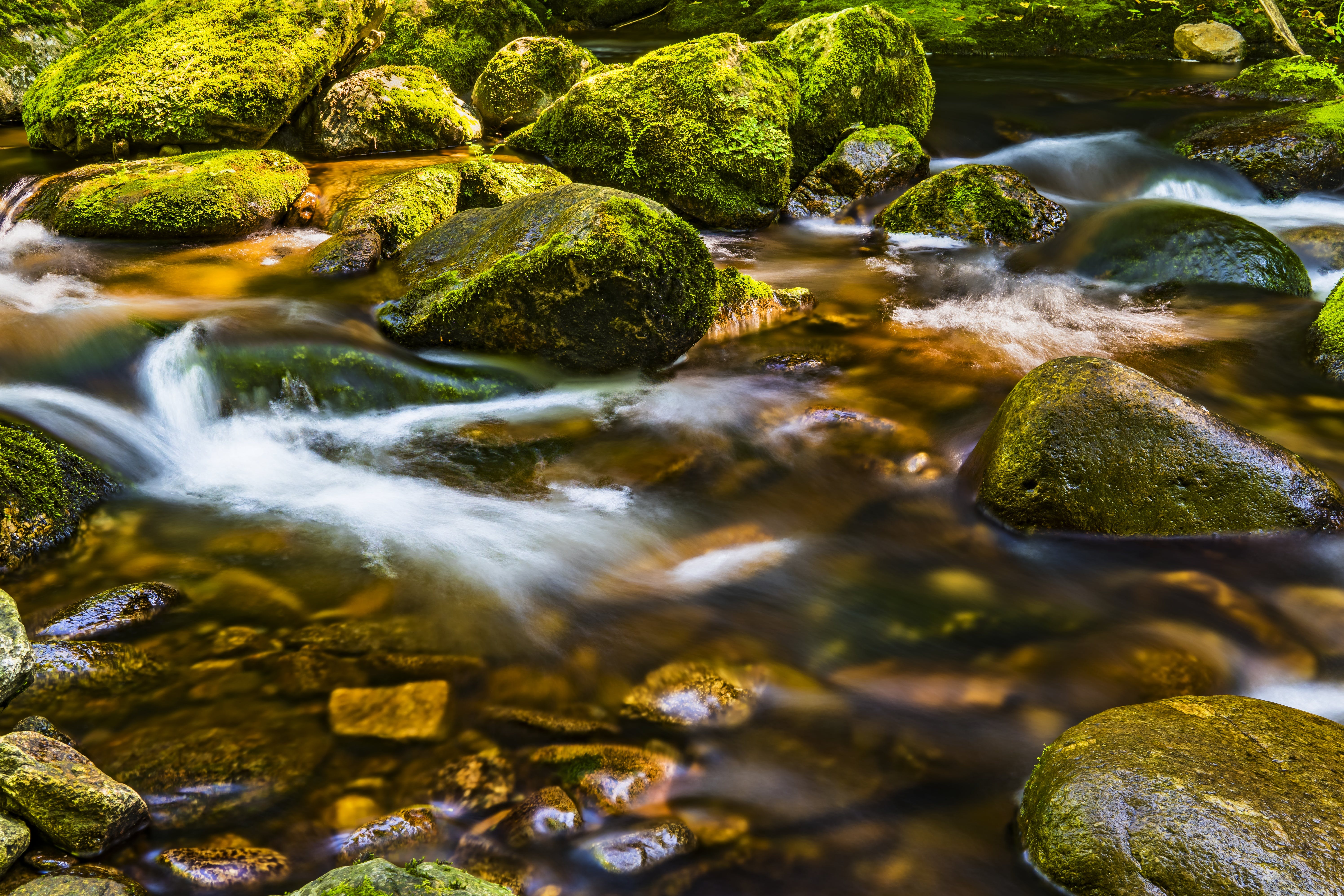 Timelapse Photography of River Flowing Through Moss-covered Rocks