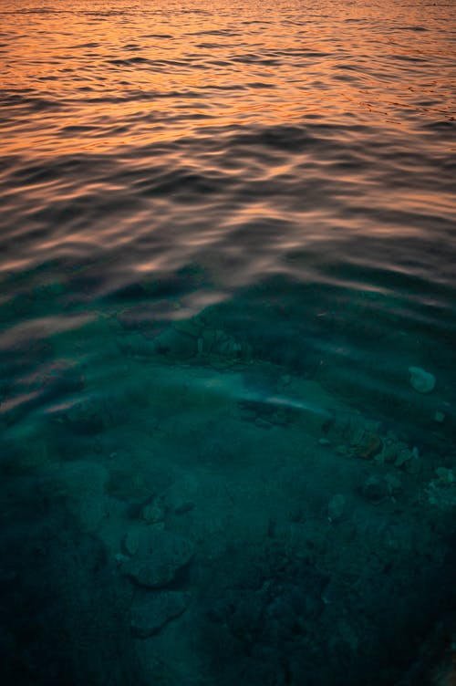 Foto profissional grátis de água, grave, mar
