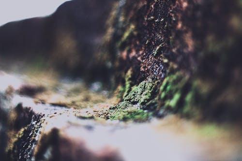 Mountain Illusion Photography
