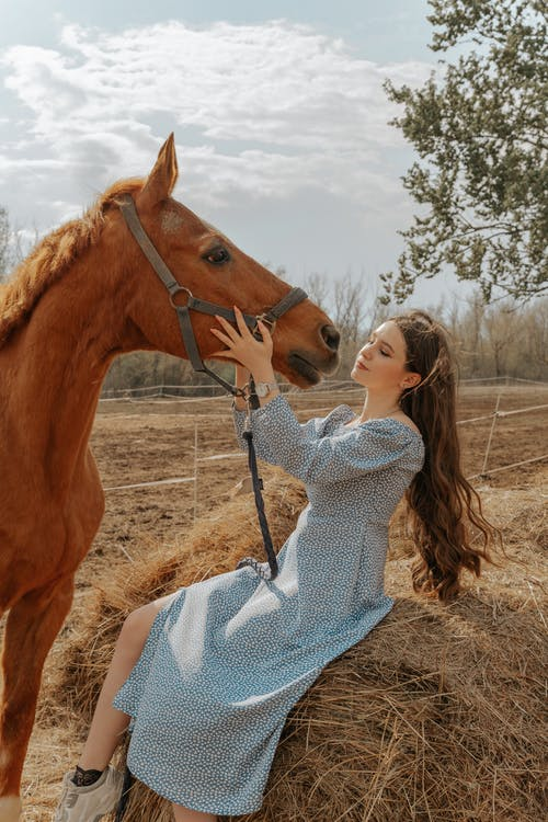 Woman in Gray Sweater Holding Brown Horse