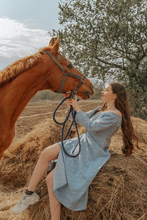 Woman in White and Black Polka Dot Dress Kissing Brown Horse