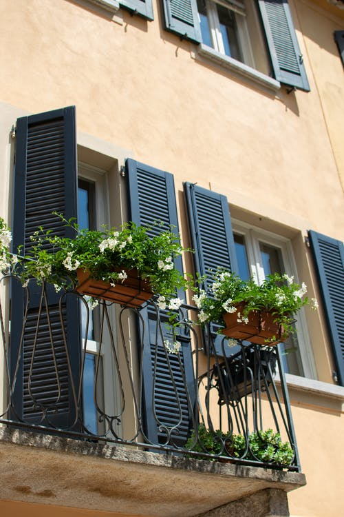Gratis lagerfoto af arkitektur, balkon, blomst