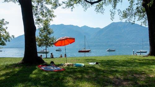 Gratis lagerfoto af @outdoor, alperne, båd