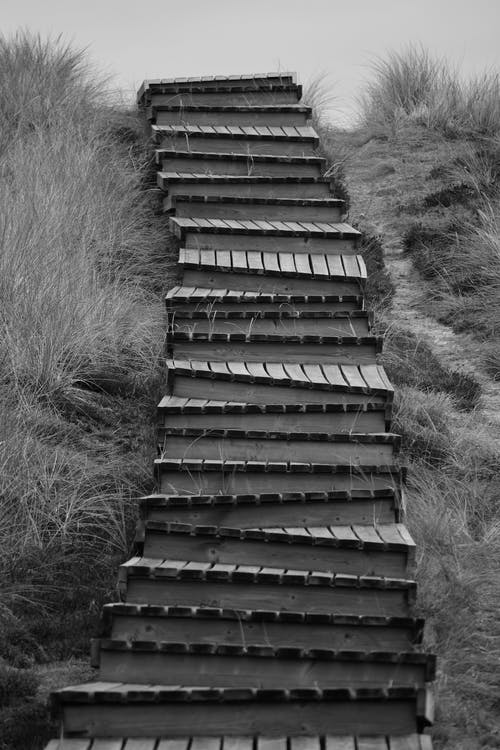 Grayscale Photo of Wooden Stairs on Grass Field