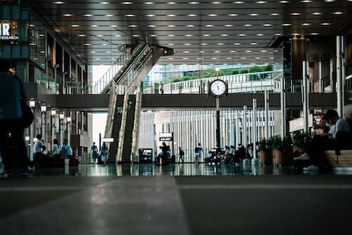 Imagine de stoc gratuită din aeroport, afaceri, antrena