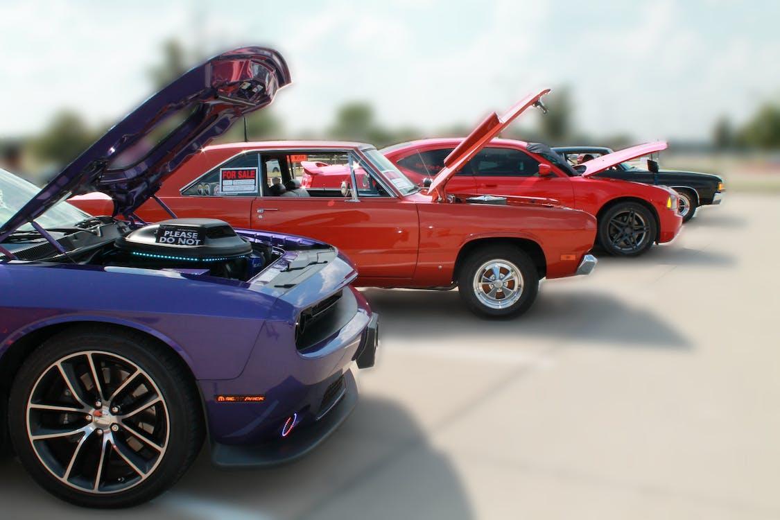 automobile, car show, cars