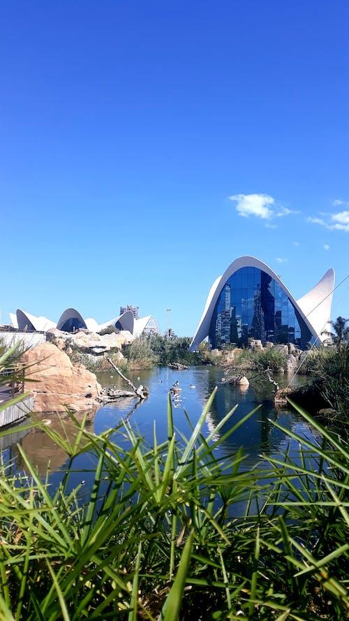 Ảnh lưu trữ miễn phí về bối cảnh đẹp, hải dương học, Tây Ban Nha