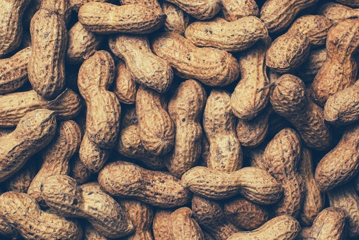 Free stock photo of food, healthy, nuts, snack