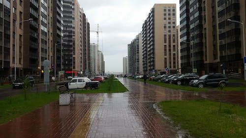 Free stock photo of rain, town