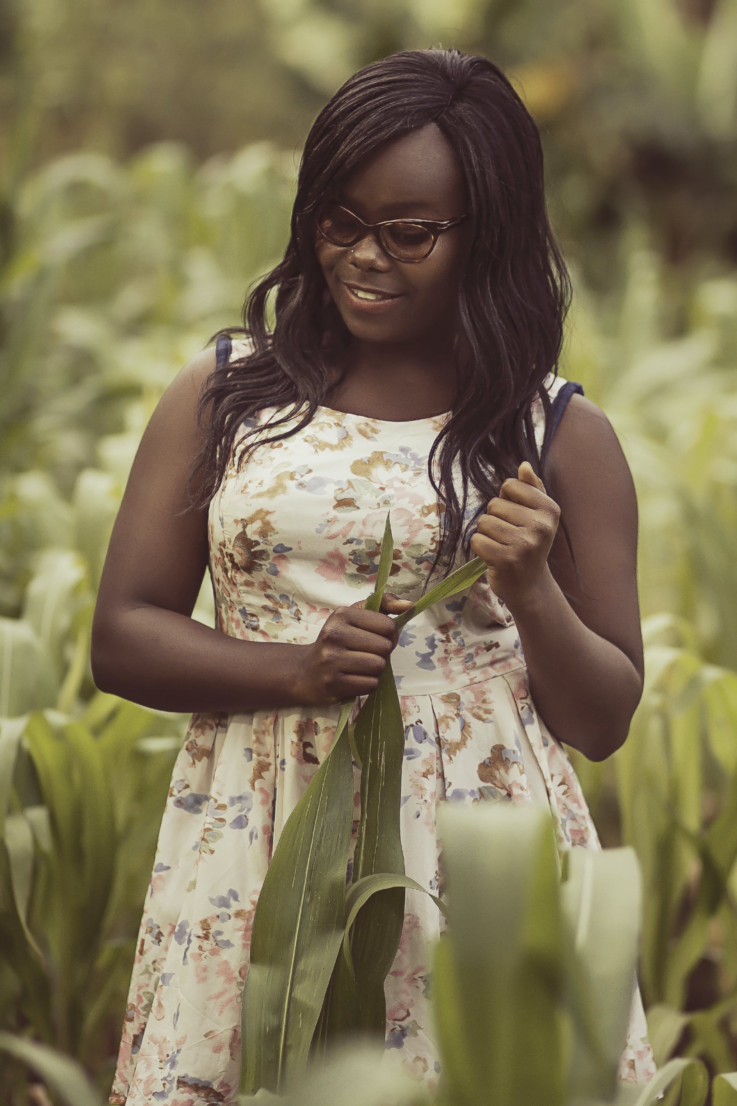 Free stock photo of africa, africangirl, corn, cornfield
