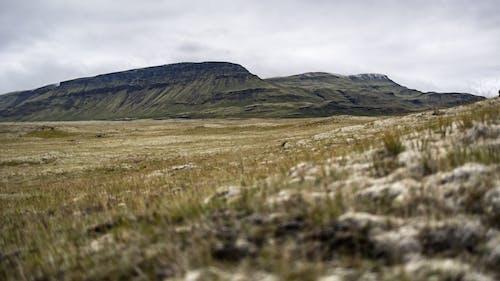 Kostenloses Stock Foto zu abenteuer, außerorts, berg