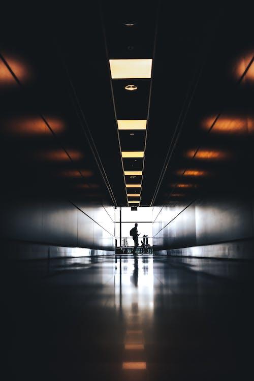 Kostenloses Stock Foto zu abstrakt, architektur, beleuchtet