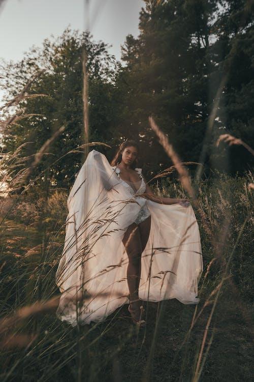 Безкоштовне стокове фото на тему «білий, день, дерево»