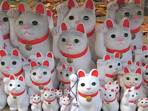 Photos gratuites de artisanat populaire, chat chanceux japonais, chats, chats chanceux