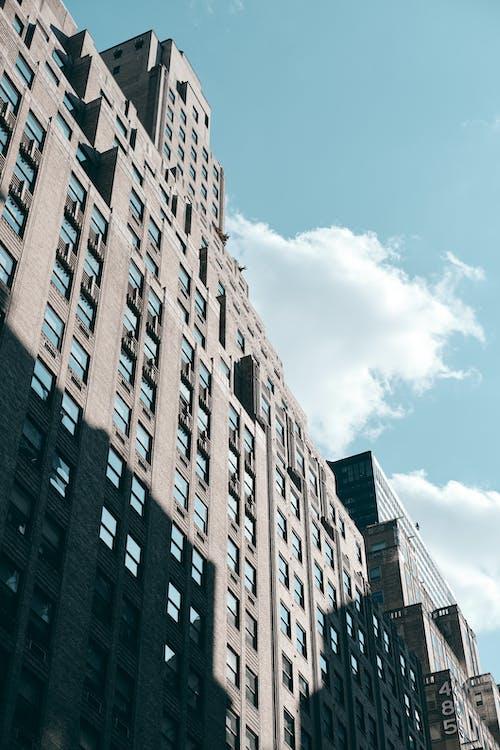 가장 높은, 가장 큰, 건물의 무료 스톡 사진
