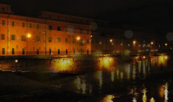 Free stock photo of city, landscape, lights, night