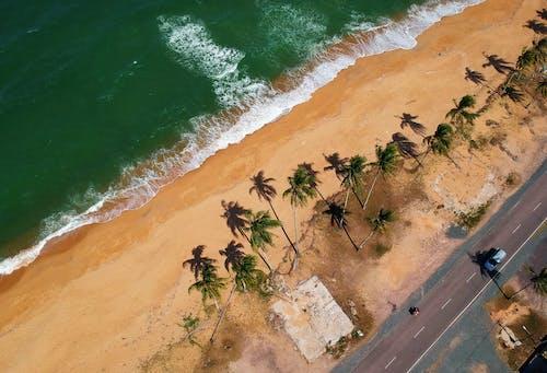Foto d'estoc gratuïta de a la vora de l'oceà, aigua, alt, carretera