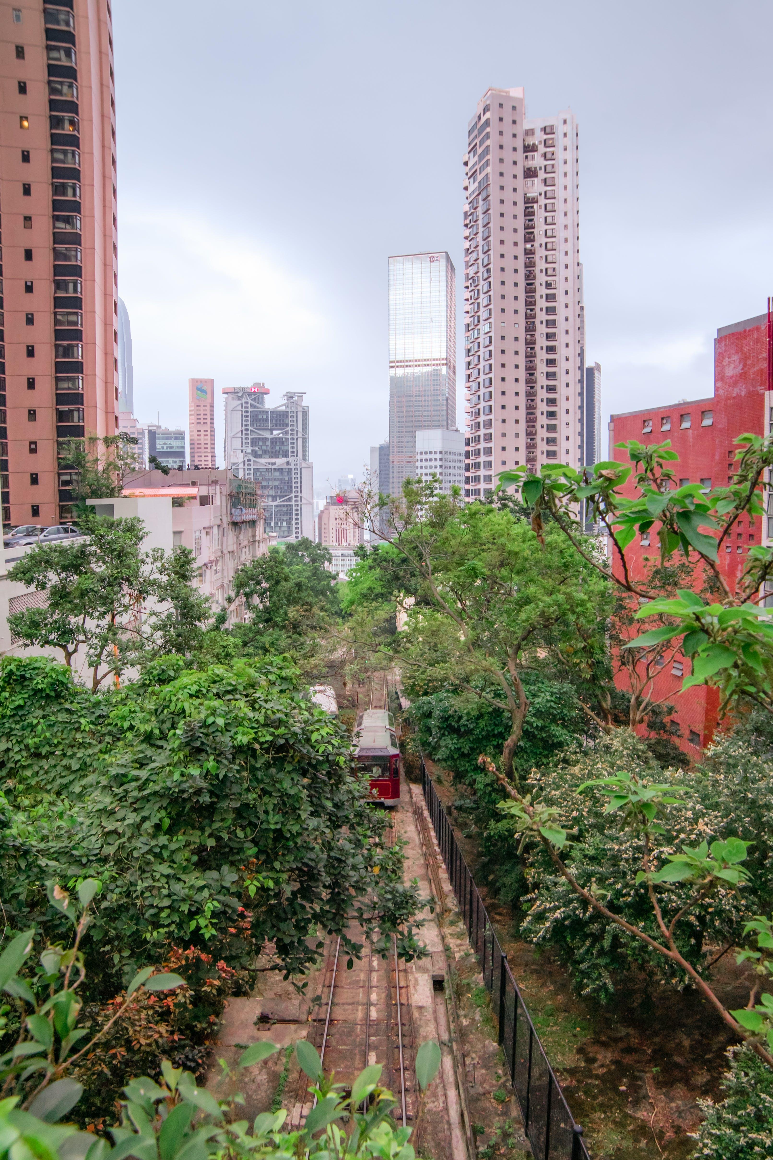 Free stock photo of buildings, city, hong kong, line