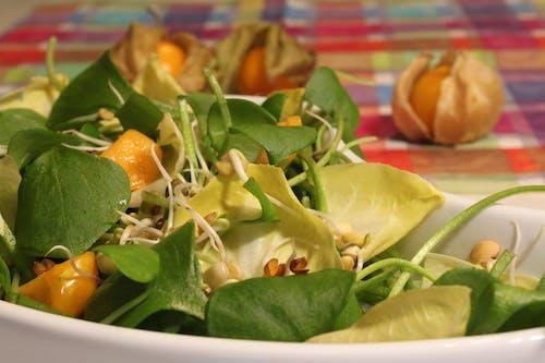 Free stock photo of fresh food, postelein, salad