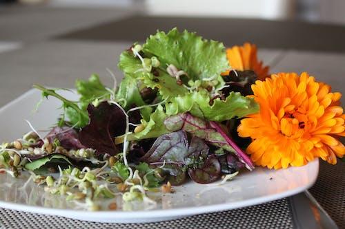 Free stock photo of flower, fresh food, salad