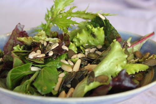 Free stock photo of fresh food, healthy food, salad