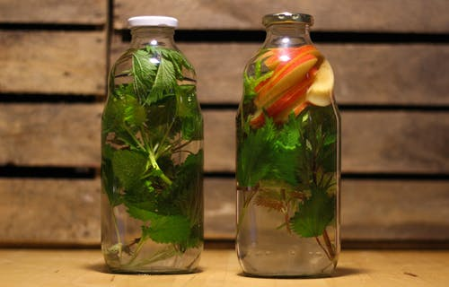 Free stock photo of healthy water, infused water, water and herbs