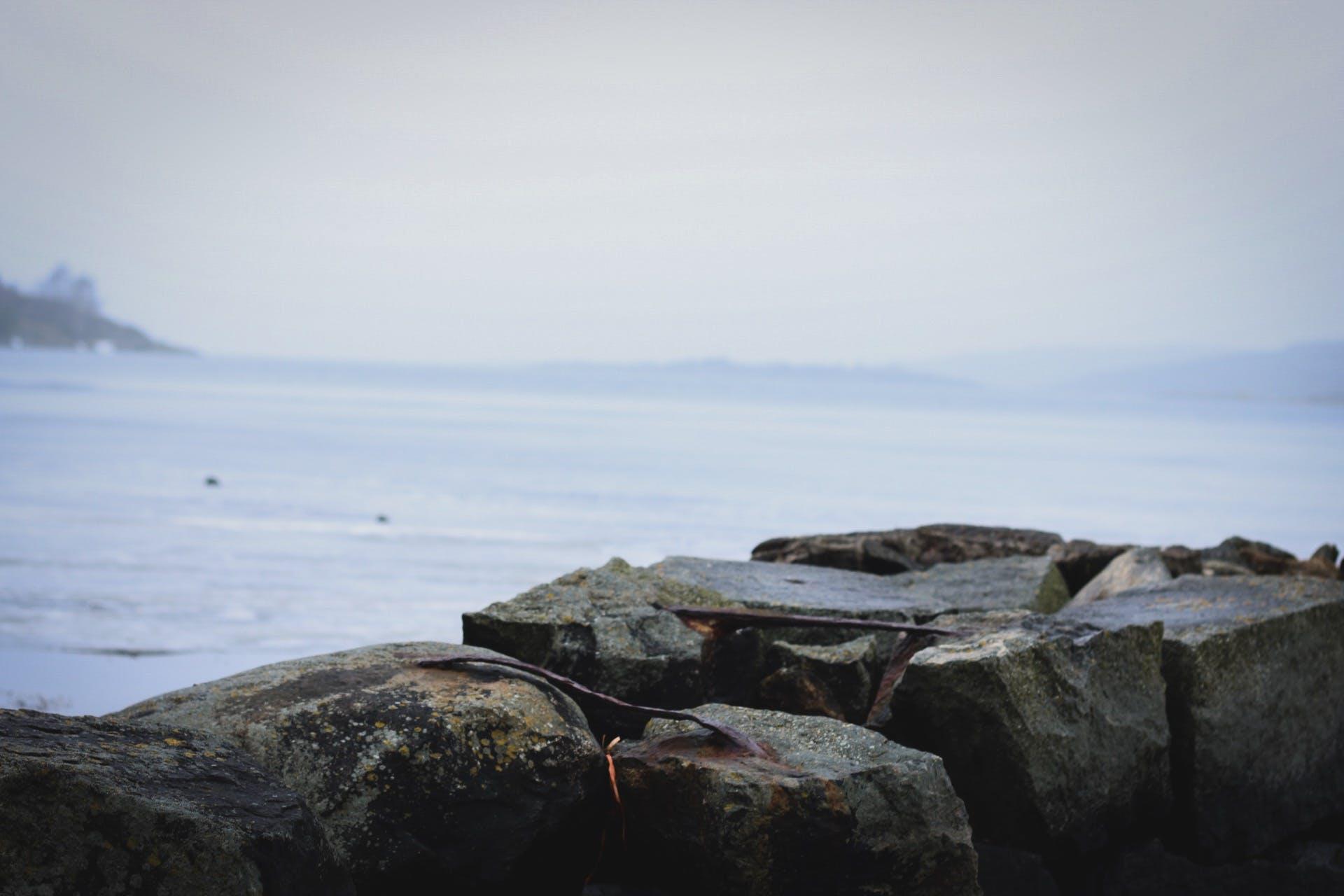 Free stock photo of foggy, ice, lake, Mossy rocks