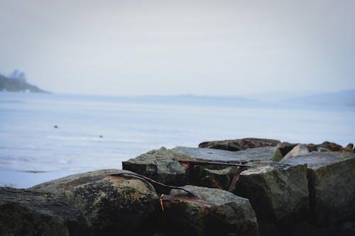 スウェーデン, 岩, 母なる自然, 水の無料の写真素材