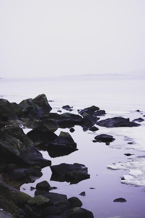 凍った湖, 岩, 水, 氷の無料の写真素材