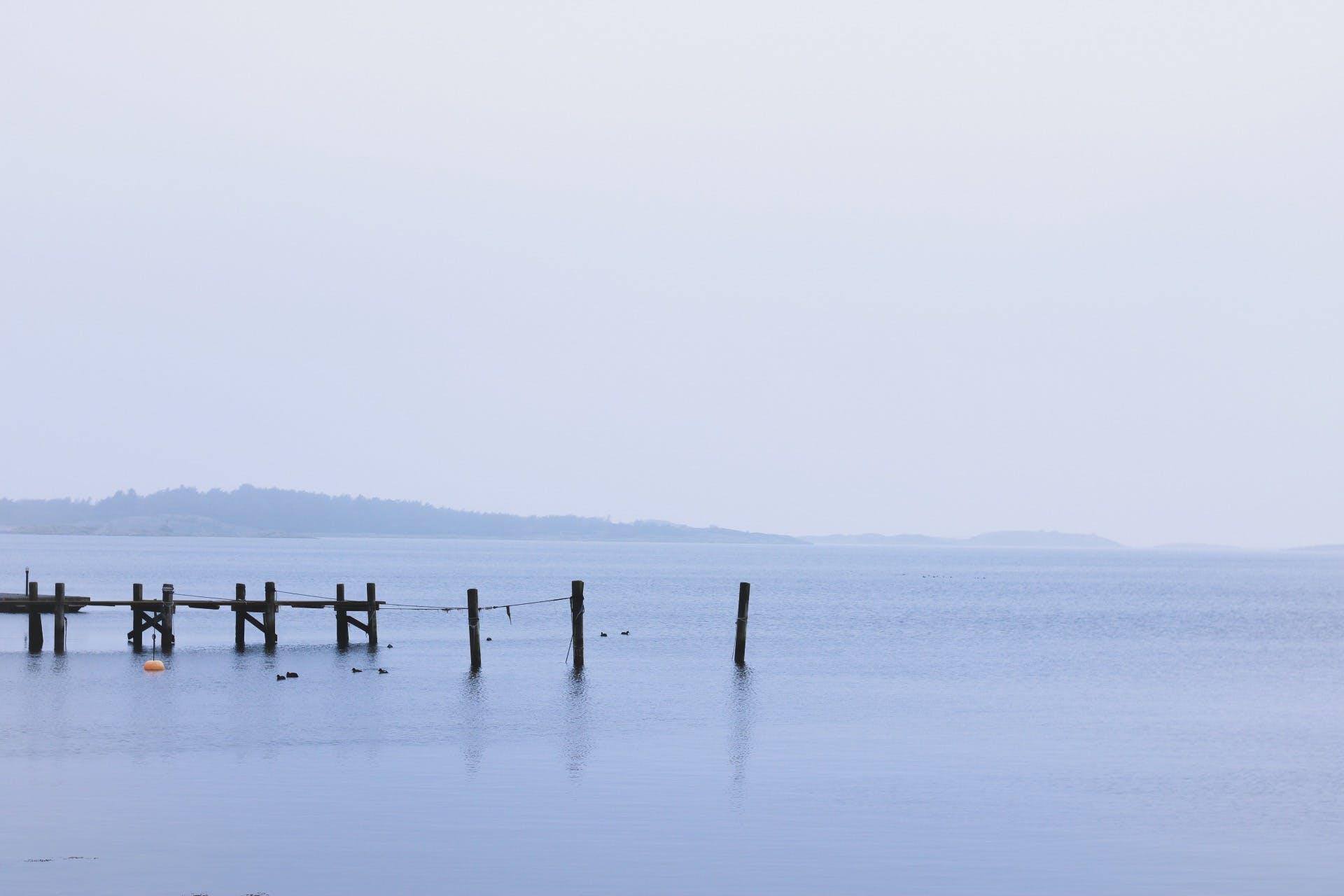 Free stock photo of foggy, frozen lake, lake, mother nature