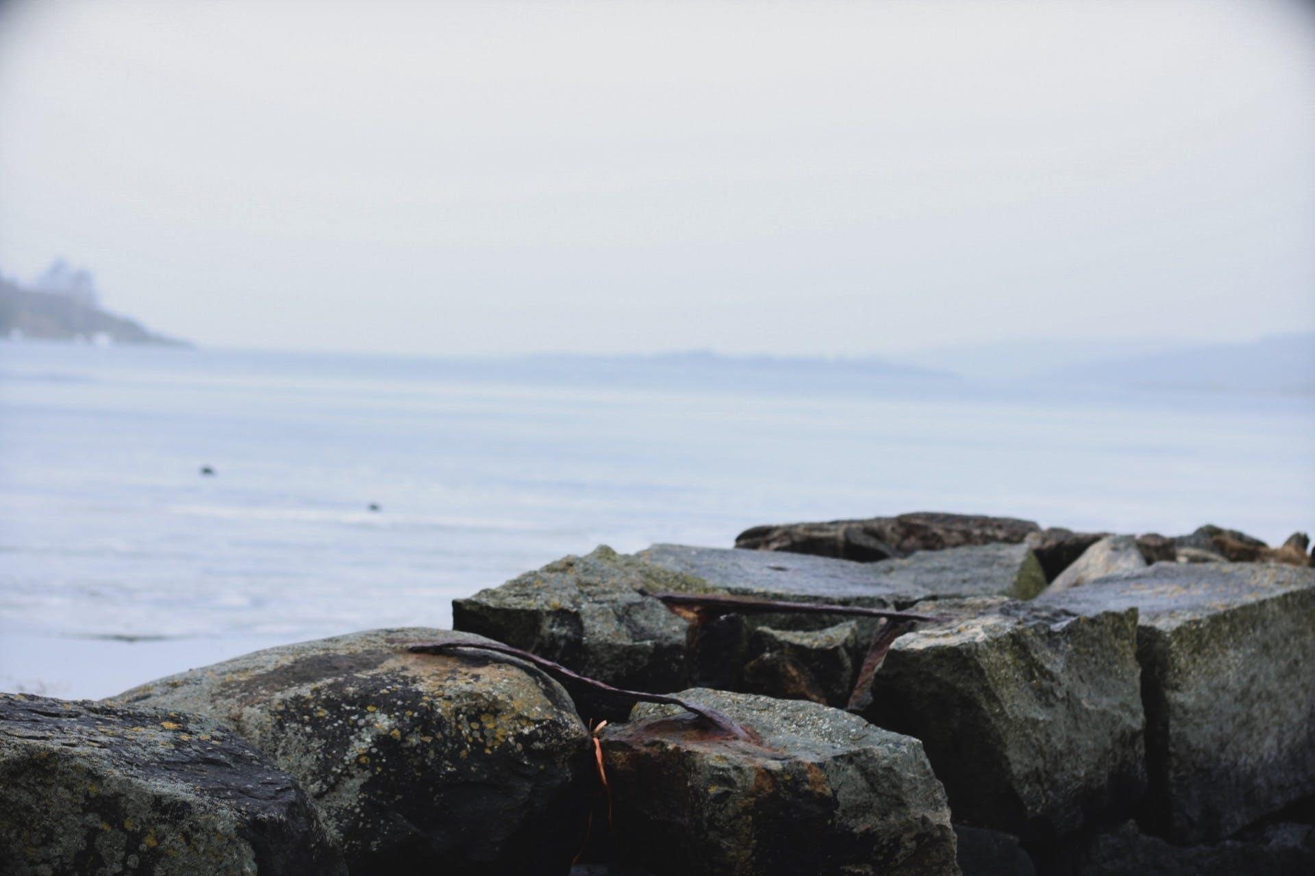 Free stock photo of foggy, Ice lake, lake, Mossy rocks