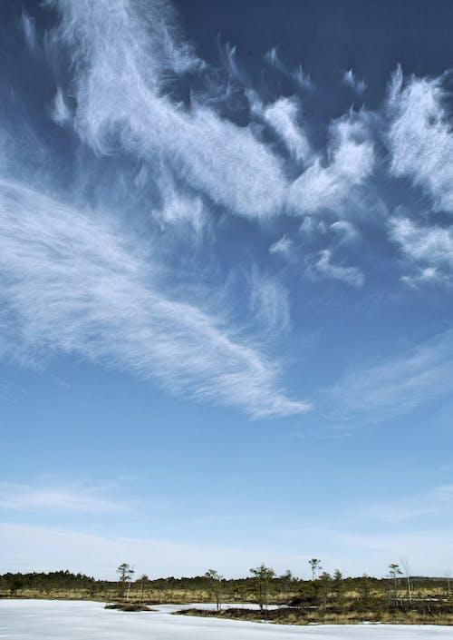 Ilmainen kuvapankkikuva tunnisteilla idyllinen, luonto, maisema, päivänvalo