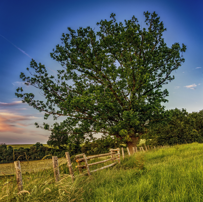 of atmospheric, Bavaria, blue, blue sky