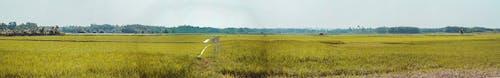 Panoramic Photo of Farm