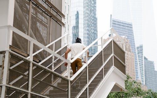검은 머리, 계단, 남자의 무료 스톡 사진