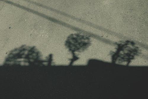 Foto stok gratis abstrak, aspal, bayangan